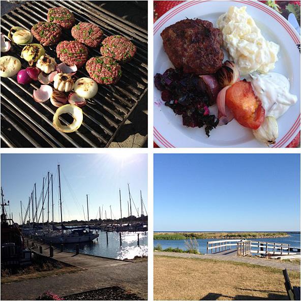 Grill, grillmad, hakkebøf, sommer, sol, kartoffelsalat, løg, hvidløg, salat, familie, hygge, hundige, havn,