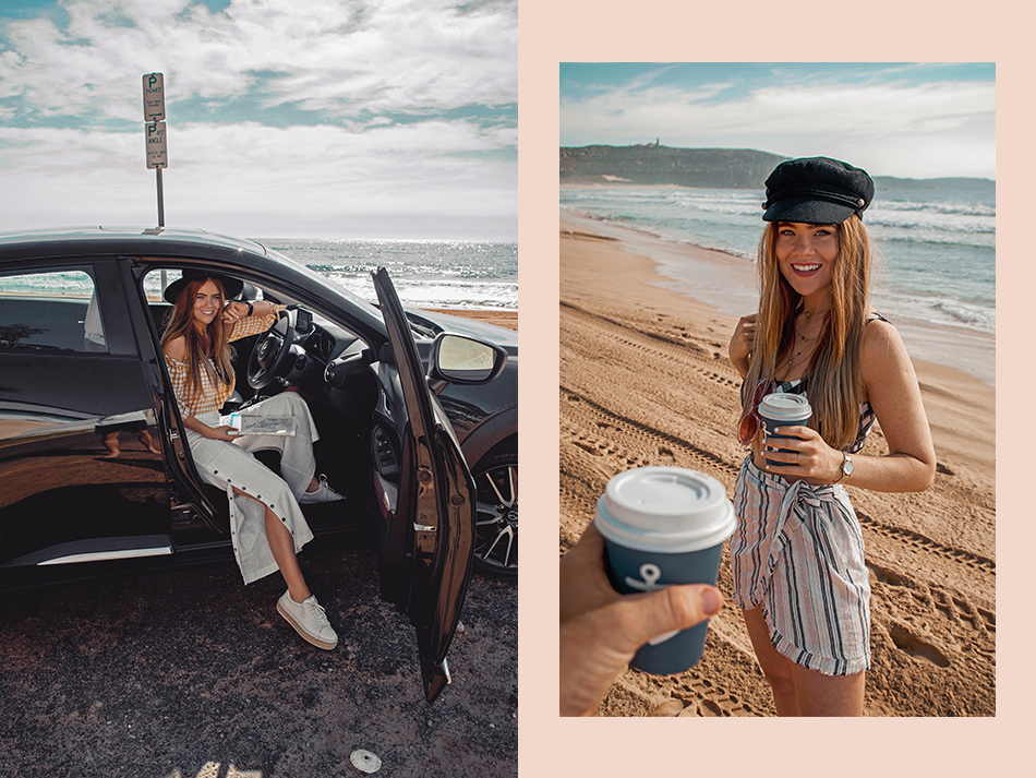 Lion in the Wild, Kiara King, travel blogger, Sydney, New South Wales