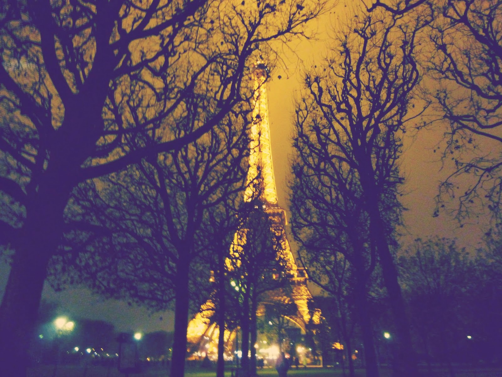 eiffel tower paris night time