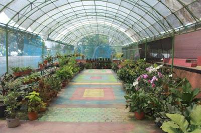 Sejuta Pesona Bunga di Bukit Flora Pasuruan