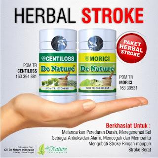 Obat herbal untuk stroke yang ringan, Obat herbal untuk stroke, Obat herbal untuk stroke ringan