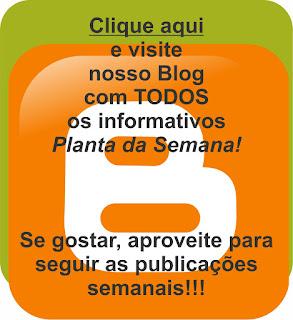 3.bp.blogspot.com/-biiLnmWf6HY/WNpvAlRFL2I/AAAAAAAAFyI/uNzIk1tsKtEts5OylGBzqT3hdAhL5vlXgCLcB/s320/planta%2Bda%2Bsemana%2Bblog.jpg