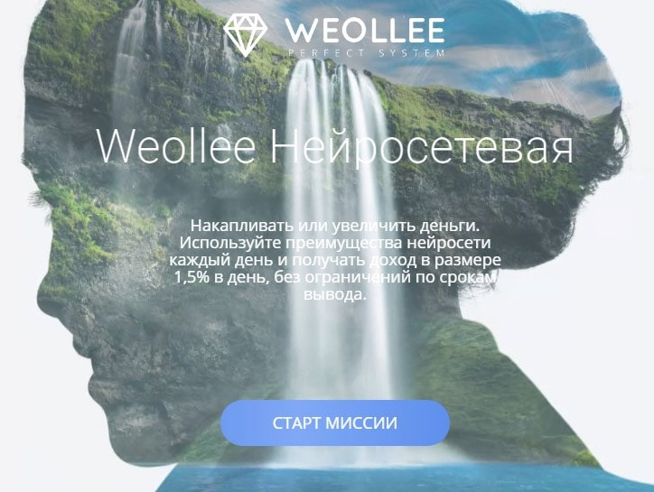 Инвестиционные планы в Weollee