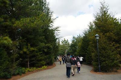10D9N Spring Japan Trip: Wizarding World of Harry Potter, USJ