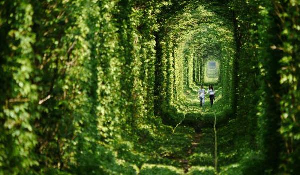 """Ukraynanın Doğal Güzelliği ile Ünlü """"Aşk Tüneli"""""""