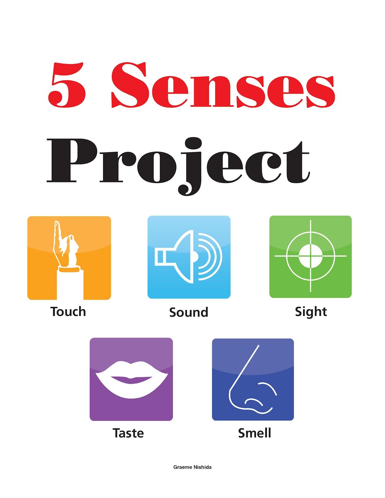 Gallery 91 Inc Sca266 5 Senses Project
