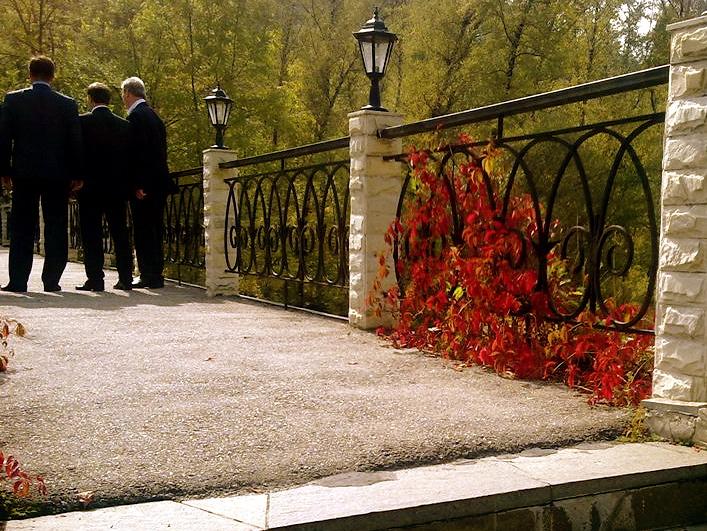 Herren von hinten, sie stehen auf einer Terrasse, rechts steht Wein (?) in voller Herbstfarbe.