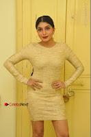 Actress Pooja Roshan Stills in Golden Short Dress at Box Movie Audio Launch  0010.JPG