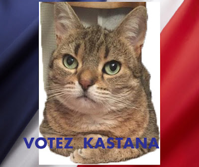 Kastana mascotte de Radio Satellite2  http://radiosatellite2.com