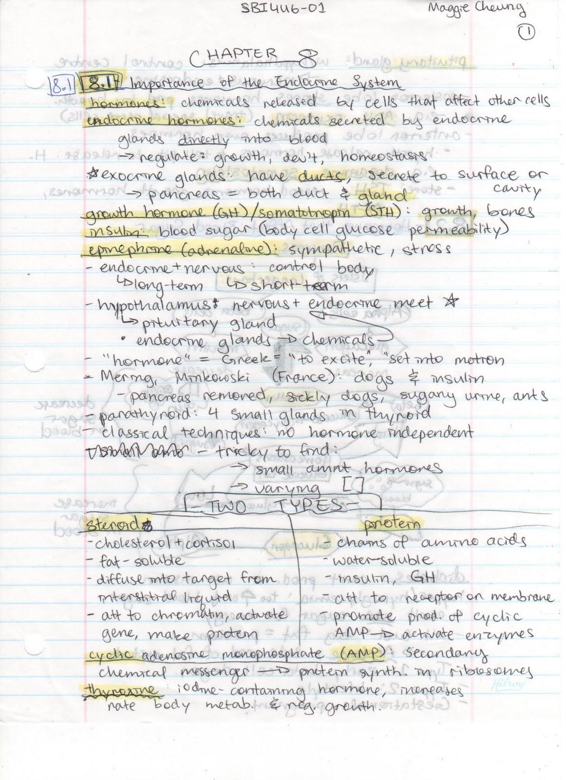 SBI4U601: Chapter 8 Notes  Endocrine System Chart