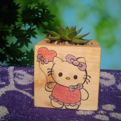 Trang tri phong ngu Hello Kitty dep 10
