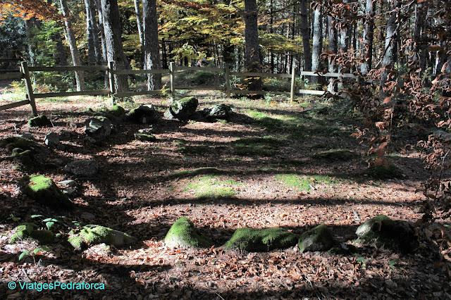 Arqueologia, Pirineu Aragonès, Parc natural de los Valles Occidentales, Valle de Hecho, Val d'Echo, colors de tardor, senderisme
