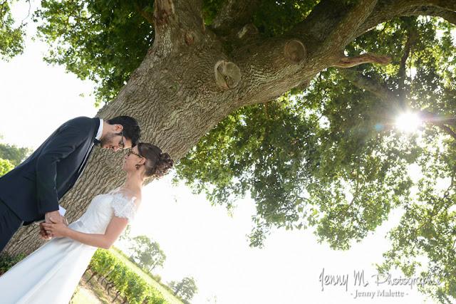 photo cérémonie laïque mariage, mariés qui se tiennent la main sous le chêne, le soleil perce au travers des feuilles