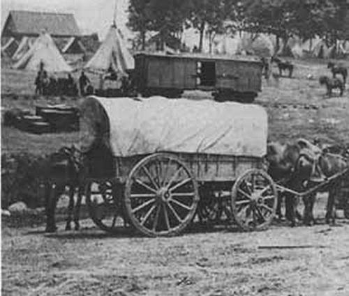 Wagons picture 1