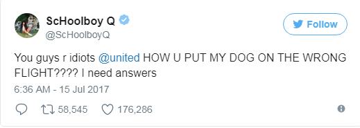 United Airlines Mengirim Anjing Seorang Rapper ke Kota Yang Salah