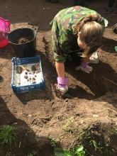 The Sherwood Forest Archaeology Training Fieldschool