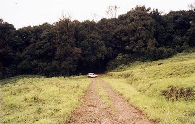 WAY TO GANGAMOOLA, Chikamagalur