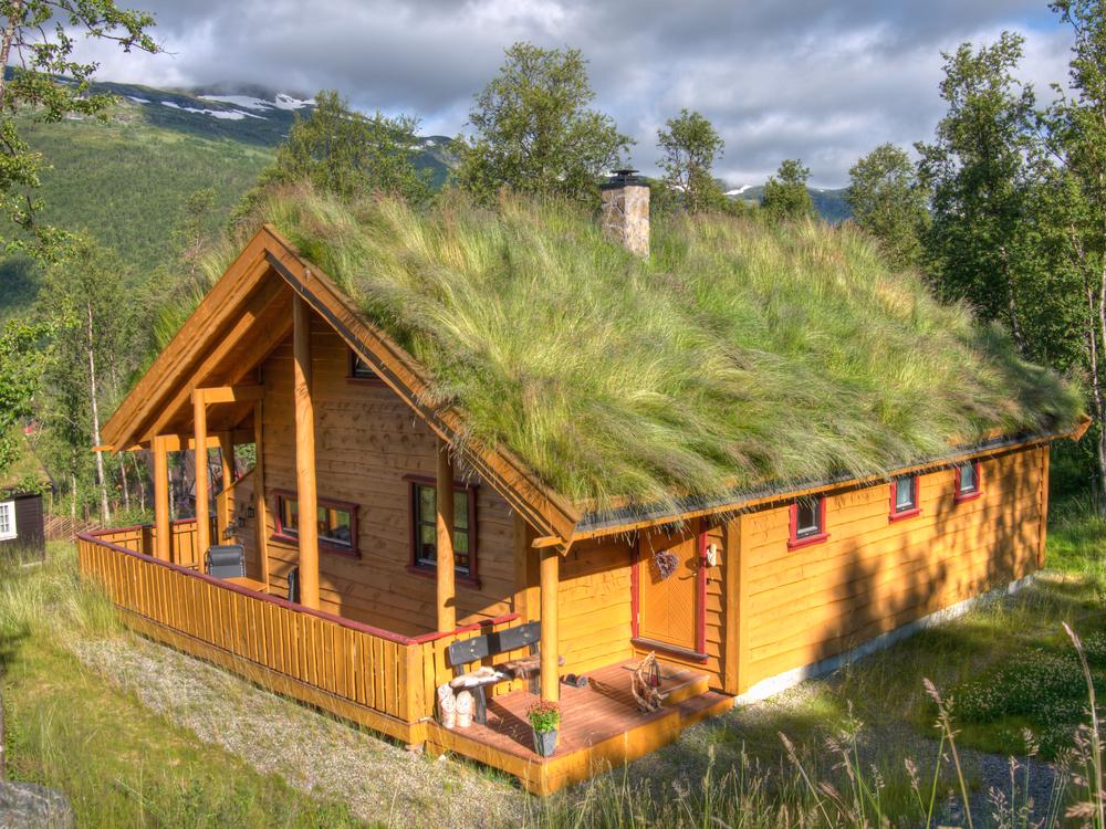 Unterschiede zwischen Blockbohlenhäusern und Holzrahmenhäusern   Pineca