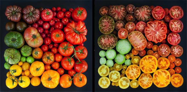 Tomato cultivars