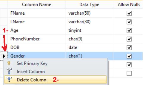 Sql server update table delete column name