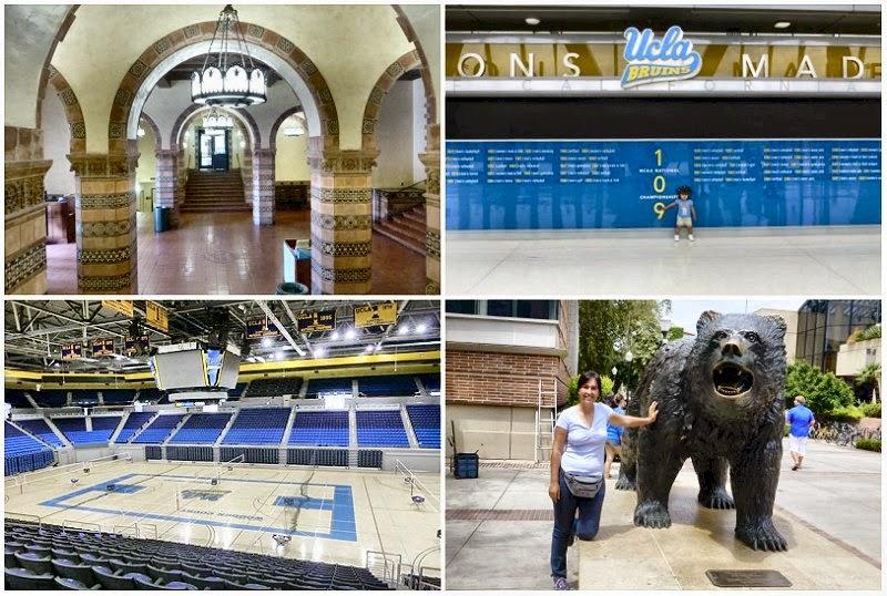 ucla università california