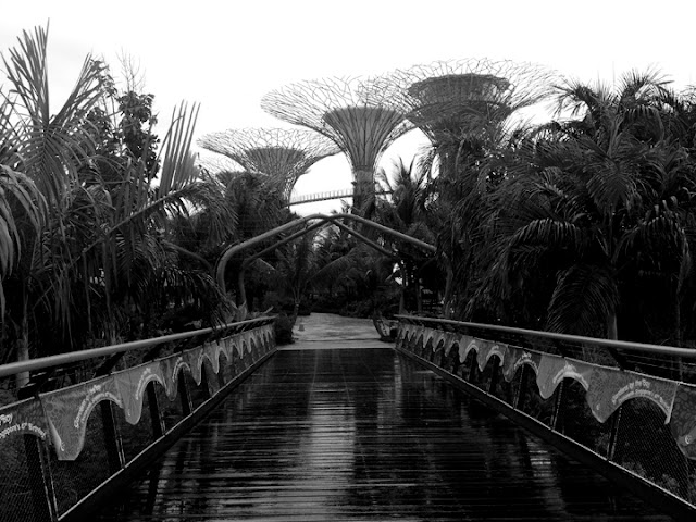 bowdywanders.com Singapore Travel Blog Philippines Photo :: Singapore :: Gardens By The Bay in Bayfront, Of Supertree Grove and Flower Domes