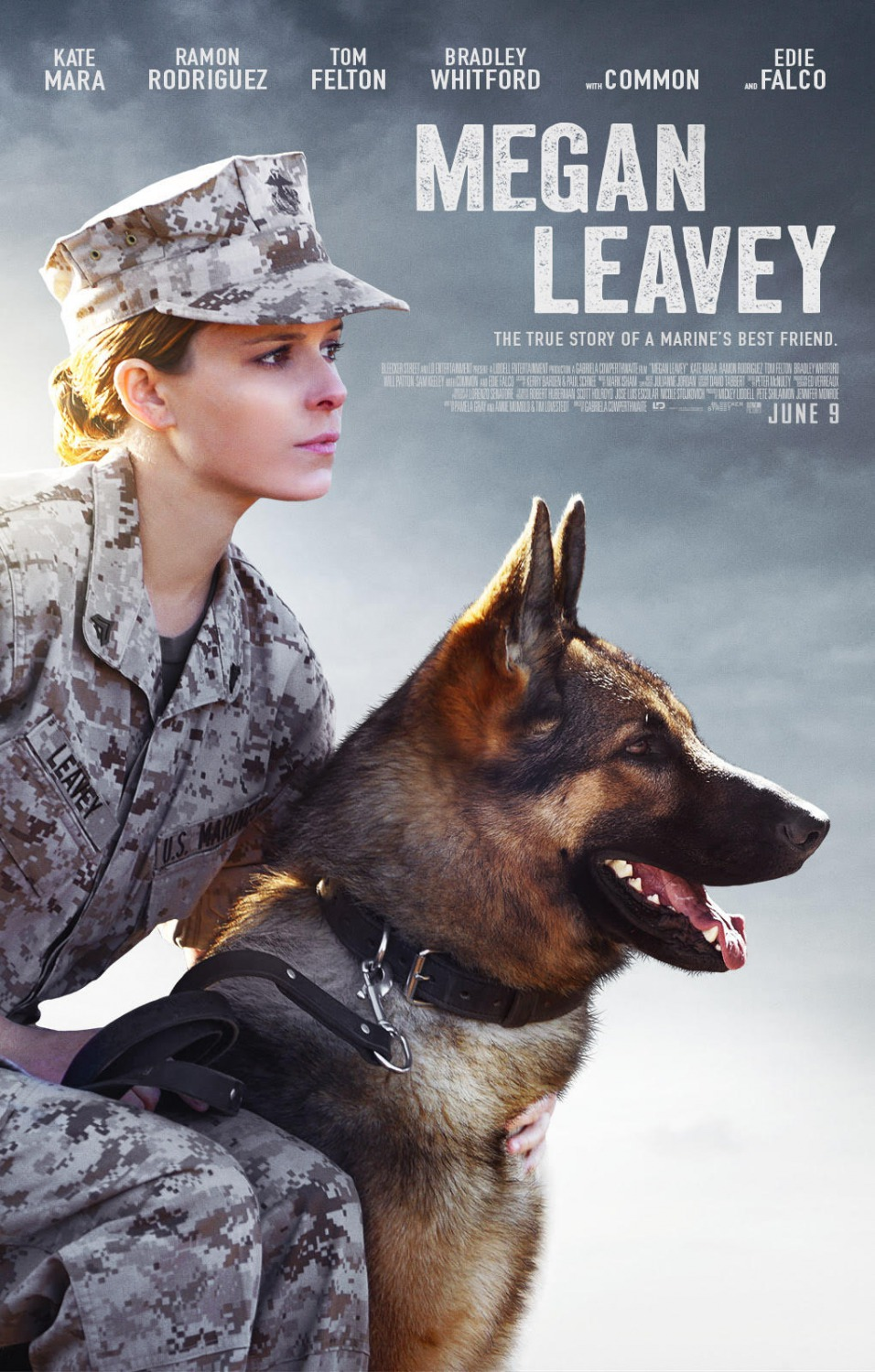 movie review megan leavey 2017 lolo loves films