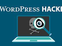 Vulnerabilidade Wordpress - Exploração