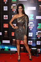 Bollywood Celebrities on the Red Carpet Of Zee Cine Awards 2017 Exclusive 008.JPG