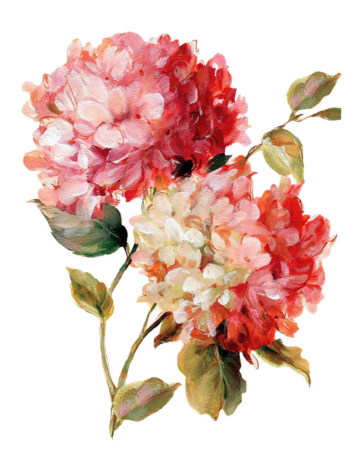 Flower Painting By Lisa Audit Png 69 Item Joy Design