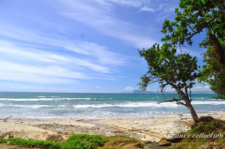 Pantai Pancur di Taman Nasional Alas Purwo, Banyuwangi.