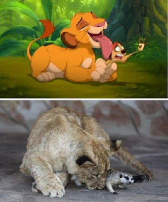 Simba and Timon from the Lion King movie