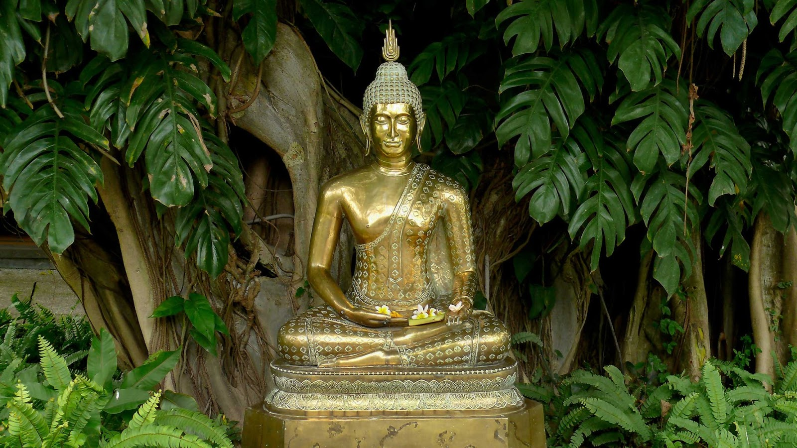 Lord Buddha Animated Wallpapers Buddha Quotes About Nature Quotesgram