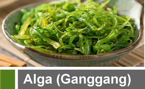 Alga (Ganggang): Pengertian, 14 Ciri, Klasifikasi, Struktur Sel, Reproduksi, Contoh dan Peranannya dalam Kehidupan