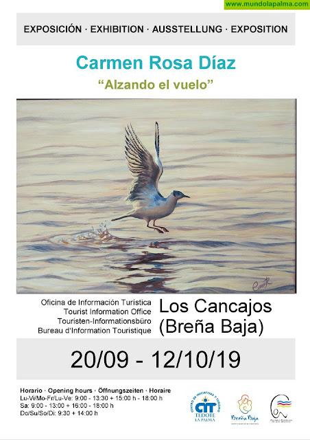"""Exposición de """"Alzando el Vuelo"""" en Breña Baja"""