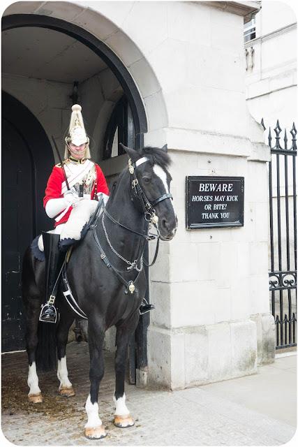 Horse guard London