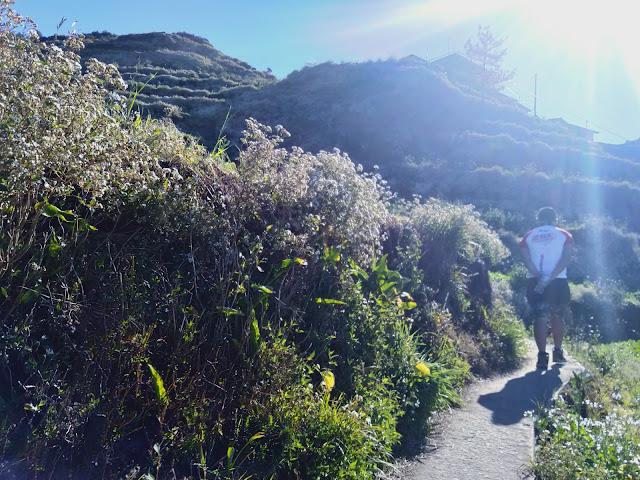 Mt. Timbac trail