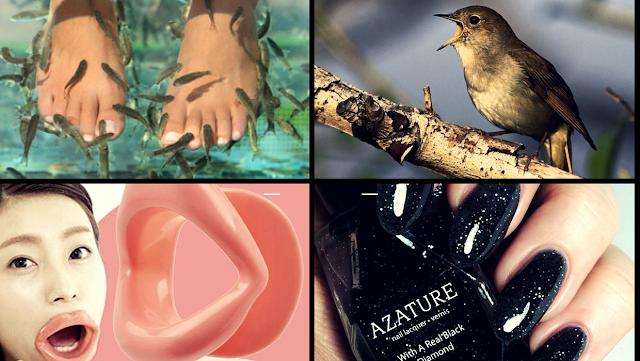 soins et produits de beauté insolites