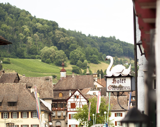 Great Places to Visit Near Zurich: Swan storefront in Stein am Rhein