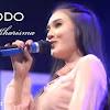 Lirik Lagu Ra Jodo oleh Nella Kharisma - Official Dunia Lirik NET