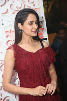 Pragya Jaiswal in Stunnign Deep neck Designer Maroon Dress at Nakshatram music launch ~ CelebesNext Celebrities Galleries 095.JPG