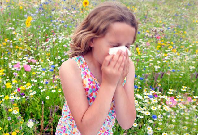 Αλλεργίες το καλοκαίρι: Ποιοι κινδυνεύουν, τι πρέπει να κάνουν