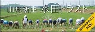 http://suiden-trust.blogspot.jp/