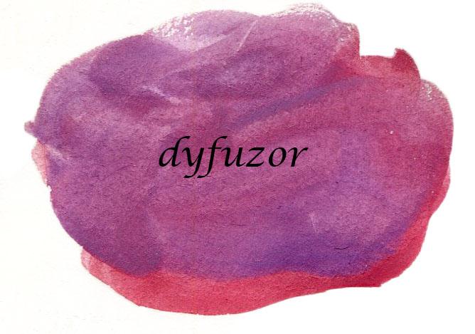 Dyfuzor po raz pierwszy + rytuał mycia
