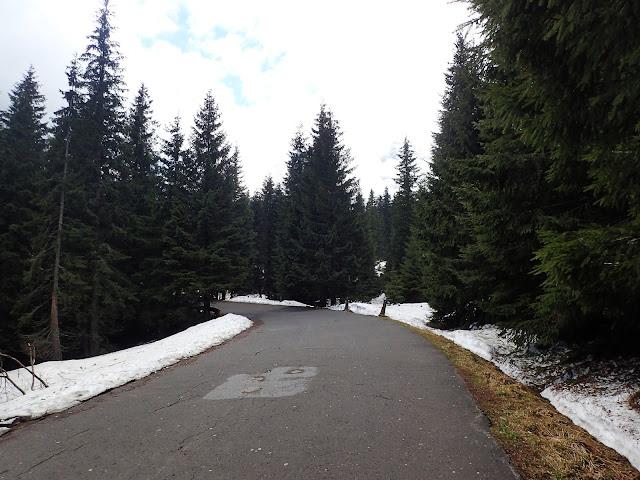 Mimo połowy maja, nawet w okolicach szlaku leży jeszcze śnieg
