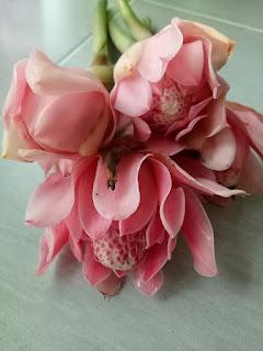 Cara Simpan Bunga Kantan Kekal Segar