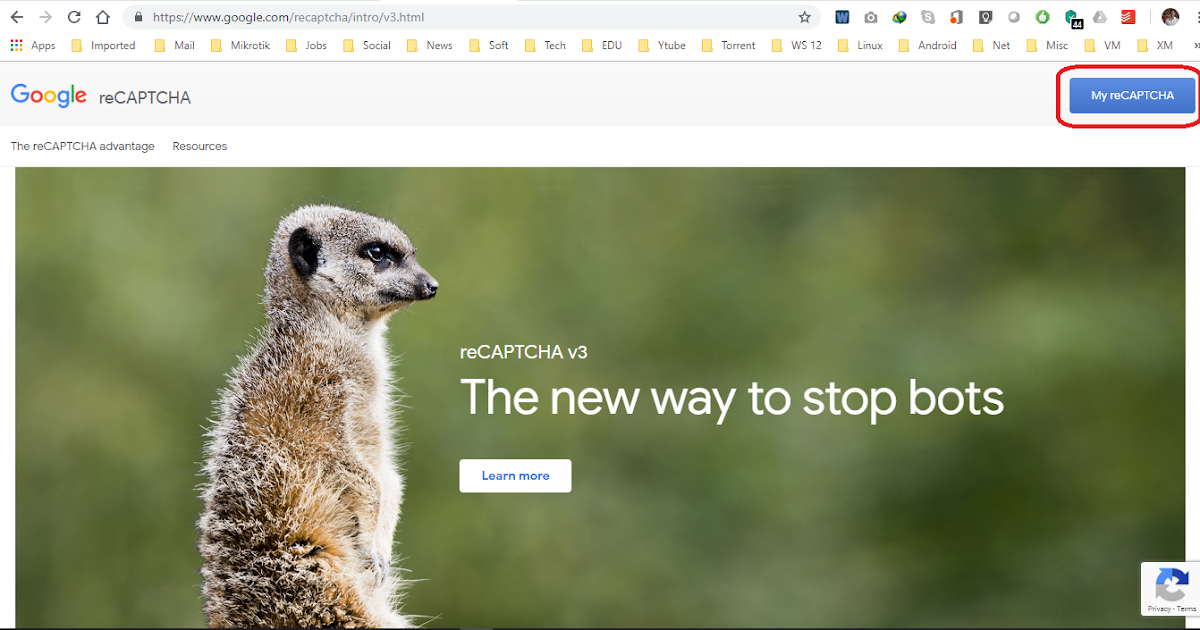 Protect CWP RoundCube From Brute Force Attack with Google reCaptcha