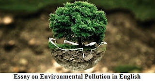 Essay on Environmental Pollution in English