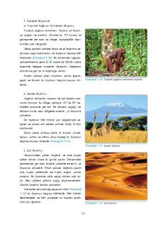 11. Sınıf Coğrafya Ders Kitabı Cevapları Gün Yayınları Sayfa 21