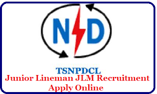 TSNPDCL JLM Recruitment